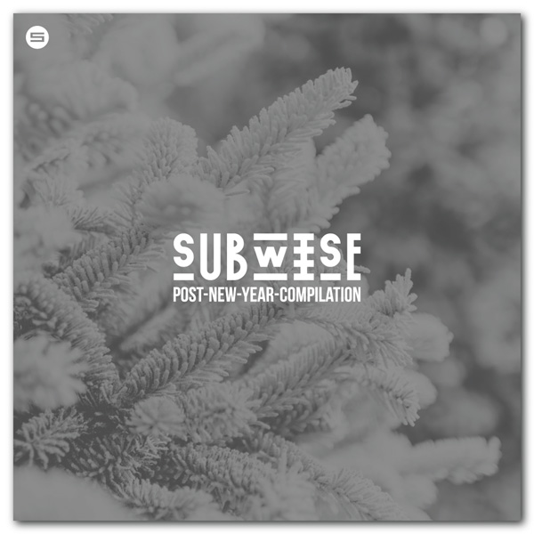 VA - SUBWISE Post-New-Year Compilation