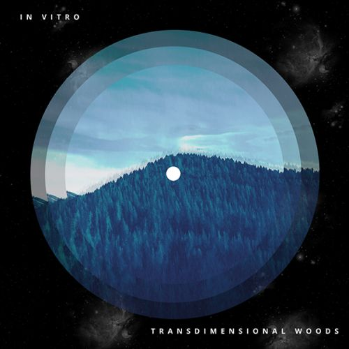 In Vitro - Transdimensional Woods