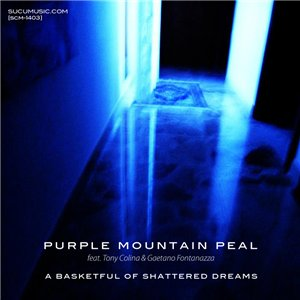 Purple Mountain Peal - A Basketful Of Shattered Dreams